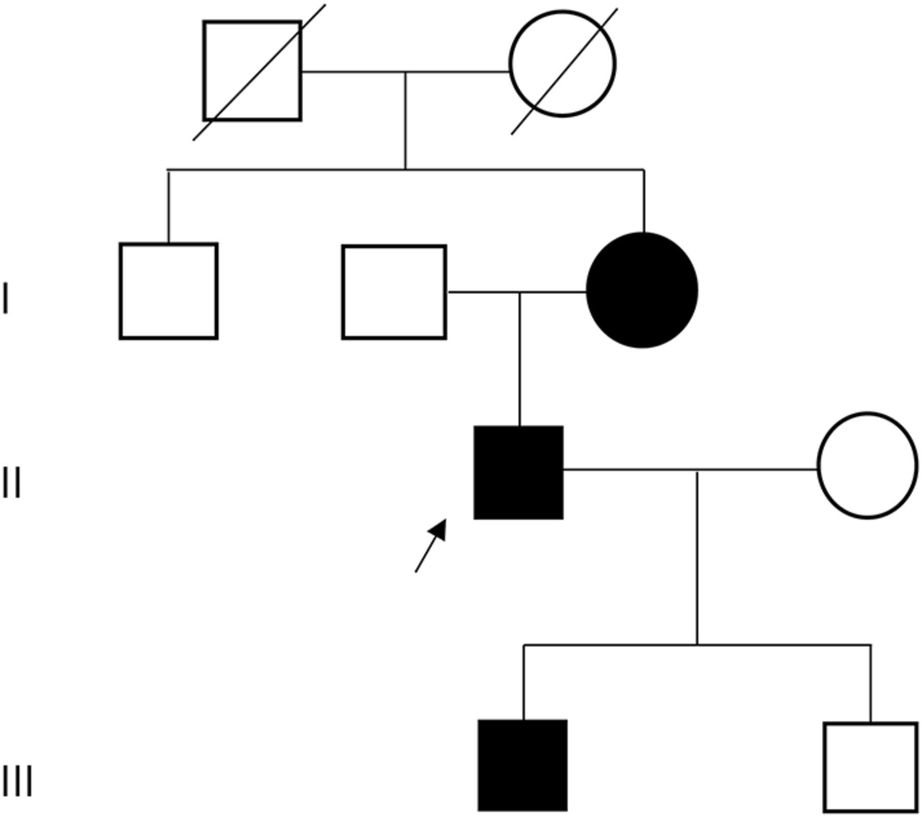 Novel mutation in TNPO3 causes congenital limb-girdle